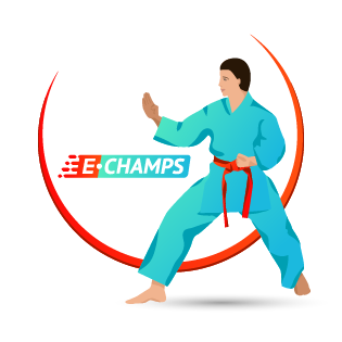 Всестилевое каратэ,  All-style karate, e-Champs