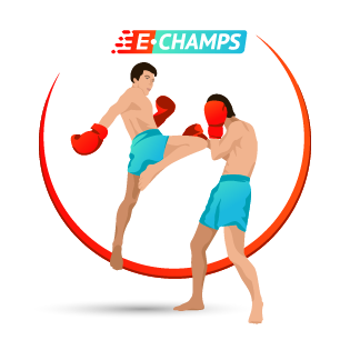 Kickboxing, e-Champs