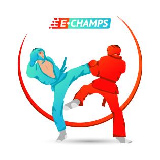 Универсальный бой,  Unifight, e-Champs
