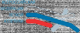 Логотип организации ООО «Всероссийская федерация легкой атлетики»