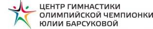 Центр гимнастики Олимпийской чемпионки Юлии Барсуковой (филиал Казань)